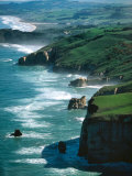 Dunedin Coast near Tunnel Beach, New Zealand Photographic Print by David Wall
