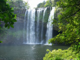 Rainbow Falls, Kerikeri, Northland, New Zealand Photographic Print by David Wall