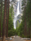 Upper and Lower Yosemite Falls. Yosemite National Park, CA Photographie par Jamie & Judy Wild