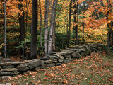 Stone Fence in Vermont, USA Reproduction photographique par Charles Sleicher