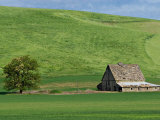 Barn near St. John, Palouse, Washington, USA Photographie par Charles Sleicher