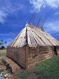 Traditional Bure, Vatukarasa Village, Fiji Photographic Print by David Wall