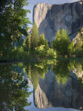 El Capitan reflected in Merced River. Yosemite National Park, CA Photographic Print by Jamie & Judy Wild