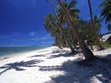 Tambua Sands Resort, Palm Trees and Shadows on Beach, Coral Coast, Melanesia Photographic Print by David Wall