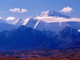 Mt. Denali and Muldrow Glacier Covered with Veneer of Vegetation, Alaska, USA Photographic Print by Charles Sleicher