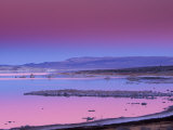 Owens Lake, Owens Valley, California, USA Photographic Print by Art Wolfe