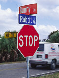 Intersection Sign on Sanibel Island, Florida, USA Photographic Print by Charles Sleicher