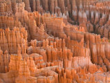 Hoodoos in Bryce Canyon from Inspiration Point, Bryce Canyon National Park, Utah, USA Photographic Print by Jamie & Judy Wild
