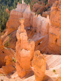 Thors Hammer, Bryce Canyon National Park, Utah, USA Photographic Print by Jamie & Judy Wild