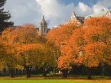 Quad in Autumn, University of Washington, Seattle, Washington, USA Photographic Print by Jamie & Judy Wild