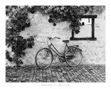La bicicleta Láminas por Monte Nagler