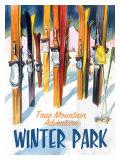 True Mountain Adventure Winter Park Impression giclée
