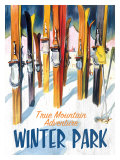 True Mountain Adventure Winter Park Lmina gicle
