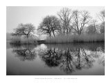 Prospect Park Morning Prints by Henri Silberman