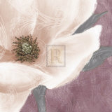 Grandiflora VII Prints by Linda Wood