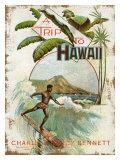 Viaje a Hawai Lámina giclée