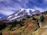 Mt. Rainier from Skyline Trail, Mount Rainier National Park, Washington, USA Photographic Print by Jamie & Judy Wild