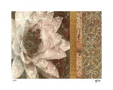 Classic Floral II Limited Edition by M.J. Lew