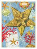 Starfish Giclee Print