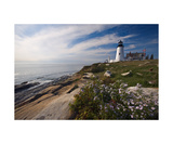 Lighthouse with Wildflowers Pemaquid Point Maine Photographic Print by George Oze