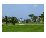 Gasparilla Clubhouse Photographic Print by Florene Welebny