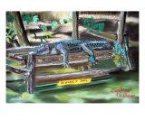 051607 Bull Gator Giclee Print by Garland Oldham