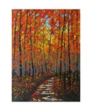 Autumn Path IX Photographic Print by Patty Baker