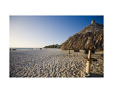 Sandy Beach and Palapas at Divi Beach Aruba Photographic Print by George Oze