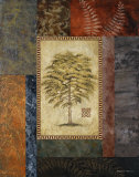 Eucalyptus Tree II Prints by Michael Marcon