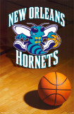 New Orleans Hornets Print