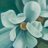 Twin Magnolia Prints by Vivien Rhyan