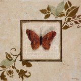 Butterfly Study I Prints by  Hakimipour-ritter