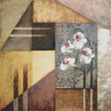 Orchids and Shapes I Arte di Michael Marcon