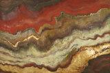 Tierra Lámina por Patricia Quintero-Pinto