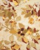 Sun-dazzled Branches II Prints by Lanie Loreth