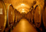 Chianti Classico Prints by Shelley Lake
