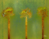 Three Palms II Art by Patricia Quintero-Pinto