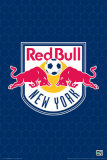 MLS New York Red Bulls Logo Poster