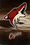 Phoenix Coyotes Posters