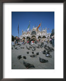 Tourists Feed the Pigeons in Saint Marks Square in Venice, Italy Prints by Taylor S. Kennedy