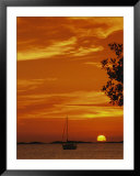 A sailboat is silhouetted by a brilliant orange sunset Poster by Nicole Duplaix