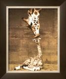 Girafa, primeiro beijo Arte por Ron D'Raine