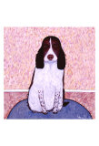 Patience - Springer Spaniel Collectable Print by Ken Bailey
