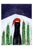 Santa Cat Limited Edition by Ken Bailey