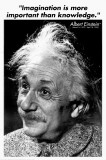 Einstein - Imagination Prints