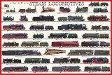 Steam Locomotives Photo