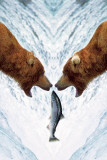 Two Bears For One Fish Posters