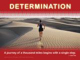 Determinación Láminas
