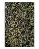 Green Giclee Print by Douglas Landau