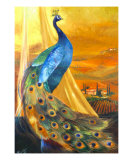 Tuscan Peacock Reproduction procédé giclée par Mary Rucker